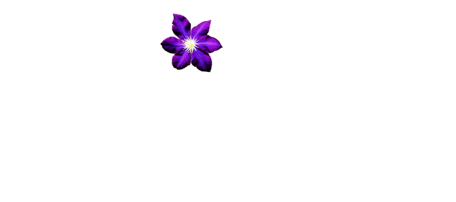 Bloomlight Productions GmbH